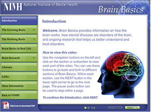 Brain Basics-National Institute of Mental Health (Video)   Learning, Brain & Cognitive Fitness   Scoop.it