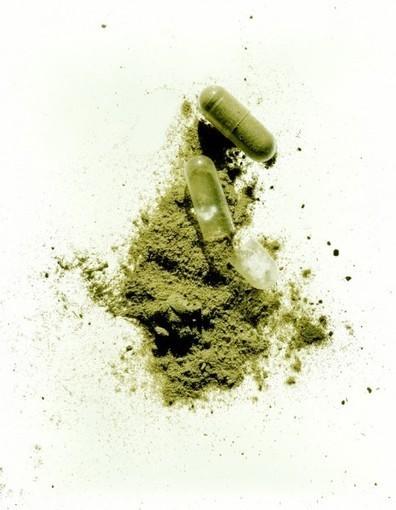 Compléments alimentaires et phytothérapie : les algues pour garder la ligne | Les allergènes et l'allergie cutanée | Scoop.it