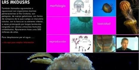 Materiales y propuestas educativas para el aprendizaje de la ciencia en MyDocumenta | EducationLovesICT | Scoop.it