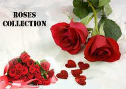 Online Flower Shop in Caloocan Philippines | Florist in Caloocan | Online Flower Shop | Scoop.it