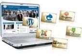 Wordpress Design and Development Company India   Vrinsofts.com   Web Designing @Vrinsofts   Scoop.it
