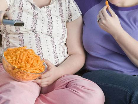 Obesity may be behind big rise in cancer of the gullet | Fit & Healthy | Scoop.it