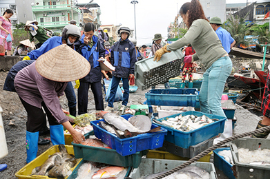 VIETNAM: Northern district reports fisheries output over 136,000 tons | Fish in Demand -Aquaculture-and-More by Youmanitas | Scoop.it