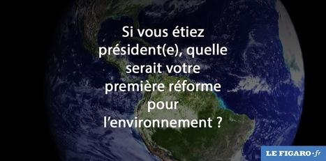 il suffit de le vouloir, seule la corruption de nos dirigeants l'en empêche ... | Change Lead-In | Scoop.it