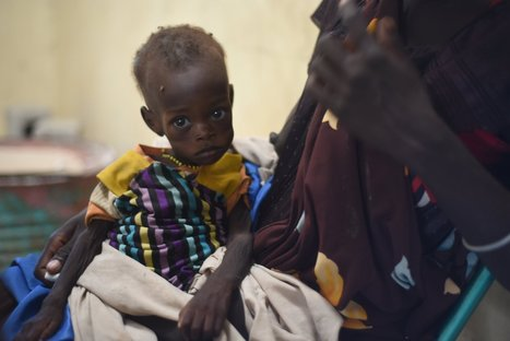 People are starving in East Africa -- again -- as the world looks away | Convergence -- Global Illicit Networks and National Security | Scoop.it