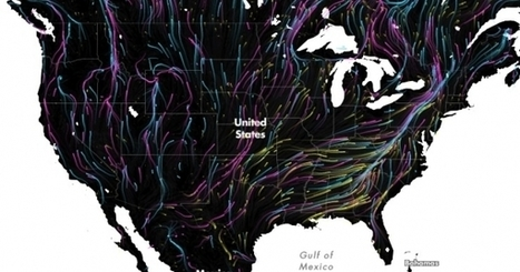 One Glorious Map Shows the Future of Animal Migrations | Sustain Our Earth | Scoop.it