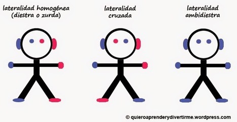 DISLEXIA: INVESTIGACIÓN Y TRABAJO: LATERALIDAD CRUZADA | HeC - DISLEXIA: Investigación y Trabajo | Scoop.it