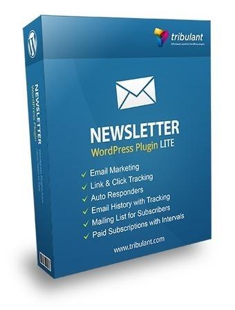 Sunday Freebie: WordPress Newsletter Plugin- Lite - DealFuel | Web Designer Pad | Scoop.it