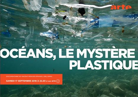 Du plastique plein la mer - Futur Arte | Ressources pour la Technologie au College | Scoop.it