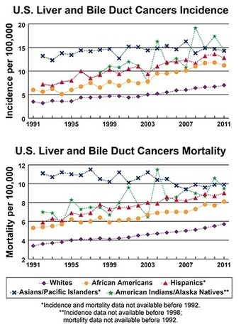 A Snapshot of Liver Cancers | Hepatitis C New Drugs Review | Scoop.it