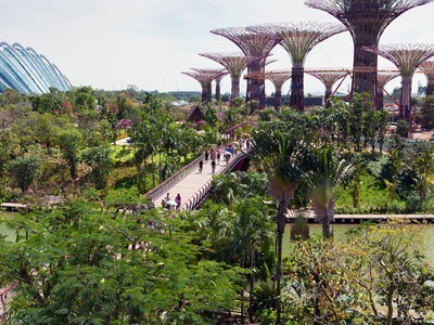 Singapore's Supertree-Powered Gardens By the Bay Opens to Public (Photos)   Vertical Farm - Food Factory   Scoop.it