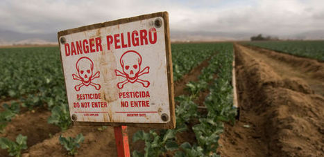 More Evidence Links Agricultural Pesticides to Autism | Autism | Scoop.it