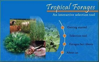 Tropical Forages: An Interactive Selection Tool | Agricultural Biodiversity | Scoop.it