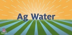 Ag Water App Assists Growers on Food Safety Issues | CALS in the News | Scoop.it