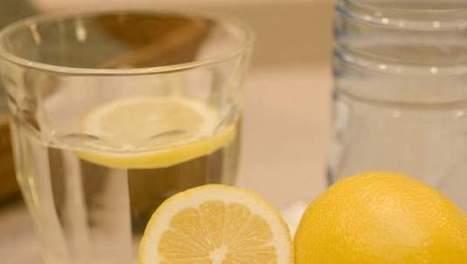 Ne mettez plus de rondelle de citron dans votre verre d'eau | A l'eau, quoi ?! | Scoop.it