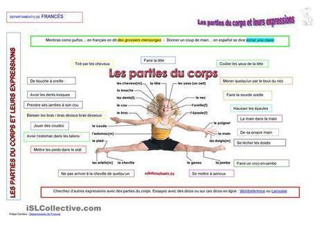 Les parties du corps et leurs expressions | POURQUOI PAS... EN FRANÇAIS ? | Scoop.it