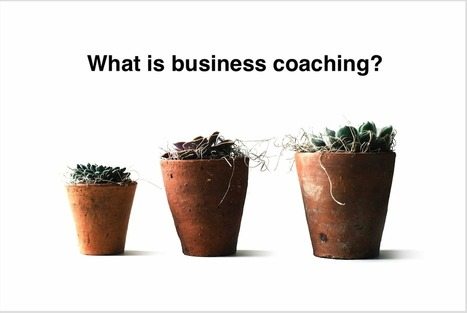 What is Business Coaching and How it Can Help in Growing Business? | Executive Coaching & Mentoring | Scoop.it