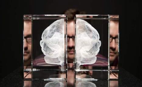 Diez claves para mejorar el rendimiento de nuestro cerebro - 20minutos.es | Ocio y Salud | Scoop.it