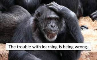 Solving the Problem of Dumb Leaders | Coaching Teacher Leaders | Scoop.it