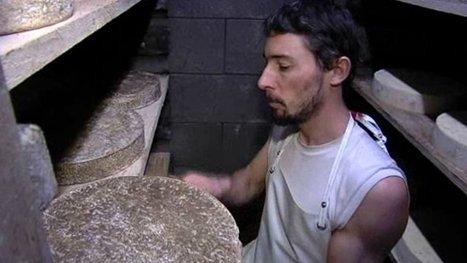 De la tomme de montagne au pays du camembert | The Voice of Cheese | Scoop.it