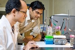 The New Harvest: Researchers Gather Electricity from Plants | Environmental Innovation | Scoop.it