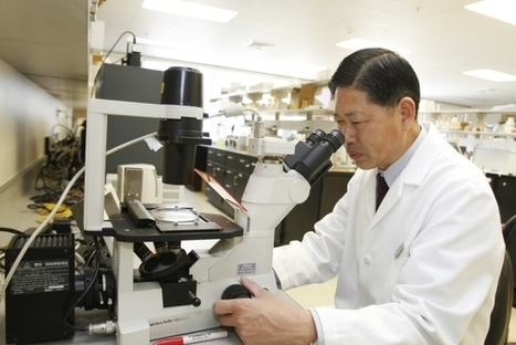 ULM pharmacy prof's research gets funding | Breast Cancer News | Scoop.it