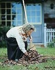 Gardening, Housework May Help Boost Your Heart Health – WebMD | Ilona's Garden | Scoop.it