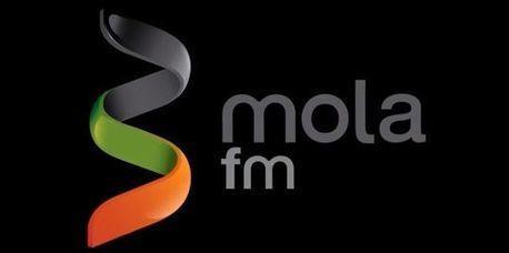 Mola.fm, primera plataforma española de crowdfunding de artistas musicales | UOC BUSINESS SCHOOL | Scoop.it