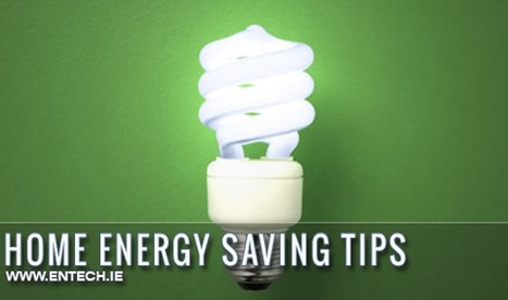Top 10 Go Green Eco-Friendly Tips for Your Home | Home Energy Saving Tips | Scoop.it