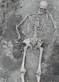 Génétique et origines de l'agricuture européenne | World Neolithic | Scoop.it
