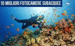 10 Migliori Fotocamere Subacquee per Prestazioni e Qualità Fotografica   fotocamerapro   Scoop.it