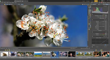 Zoner Photo Studio 17 Pro version 10 | Chroniques libelluliennes | Scoop.it