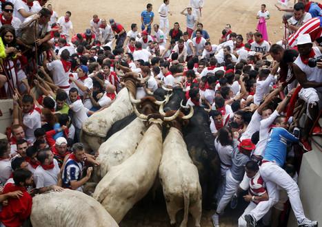 Impressionnante bousculade pendant une course de taureaux | AboutBC - Cultura y Ciencia | Scoop.it