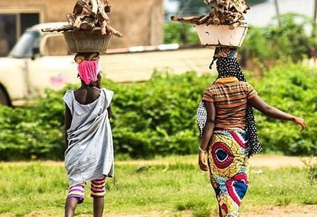 Top Pick: Rural Africa Weekly Report | NGOs in Human Rights, Peace and Development | Scoop.it