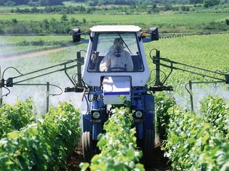 Les pesticides, «deux à mille fois plus toxiques» qu'annoncé, dit une étude - Rue89 | Le monde bio | Scoop.it