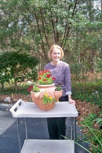 Container gardens-easy to maintain and a joy to look at | Gardening Life | Scoop.it