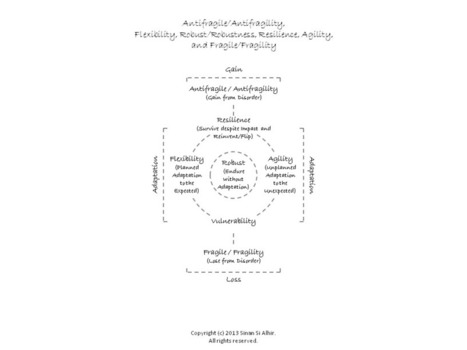 Antifragile, Flexibility, Robust, Resilience, Agility, and Fragile   Integral World   Scoop.it