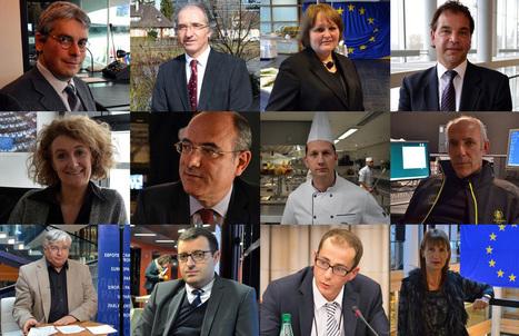 """Notre webdoc """"Les visages du Parlement européen"""" est en ligne !   Elections européennes 2014 : articles de fond   Scoop.it"""