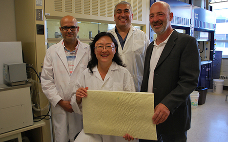 Polyol made from canola oil leading to new greener products - Faculty of Agricultural, Life & Environmental Sciences - University of Alberta   Eye on Alberta #Tech   Scoop.it