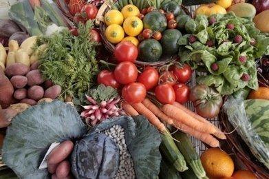 Les fruits et légumes pèsent 91 millions | Agriculture en Dordogne | Scoop.it