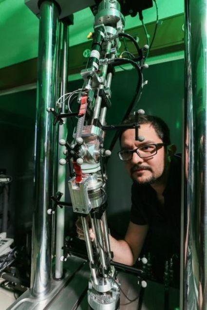 Actualité > Une prothèse de genou qui s'autosurveille | Kinésithérapie | Scoop.it