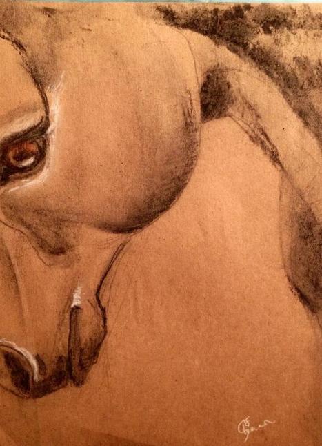Twitter / shannonmcclane: New drawing horse portrait ... | Art* | Scoop.it