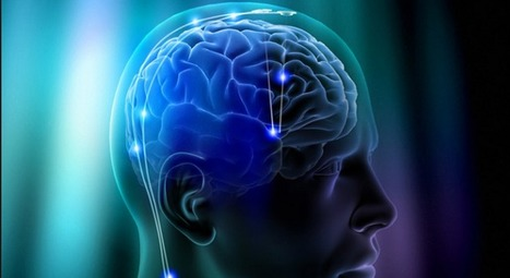 Brain training is nothing more than a placebo: study   ExtremeTech   Psicologia, neuropsicologia e neuroscienze   Scoop.it