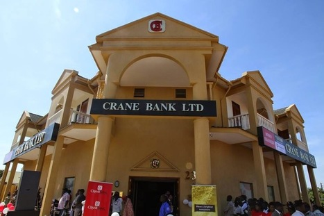 Three Foreign Suitors in Talks With Govt to Capitalize Crane Bank | | UgandaNuz | Scoop.it