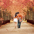 Jab Tak Hai Jaan: Movie Download Free or, Watch Online HD Link | hindi movies | Scoop.it