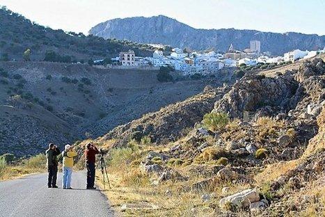 Touroperadores y agencias de turismo ornitológico del Reino Unido visitarán la provincia de Málaga en 2014 | Casa NIDO - HOUSE NEST | Scoop.it