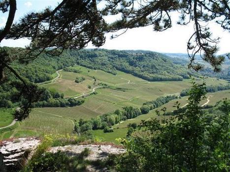 Walking Holiday in the Jura, France   Self Guided Jura Wine Trail   Jura   Scoop.it