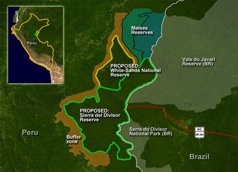 Rebranded as the Rainforest Trust, green group launches push to protect 6M acres of Amazon rainforest | Conservation + BioEconomy | Scoop.it