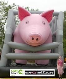 Un cochon géant vous alerte sur l'élevage intensif porcin | Des 4 coins du monde | Scoop.it