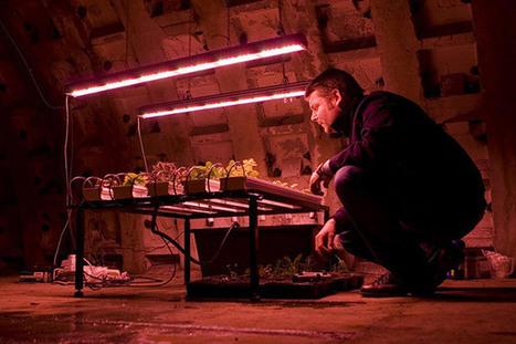 Des brocolis dans l'underground londonien ! | Société durable | Scoop.it